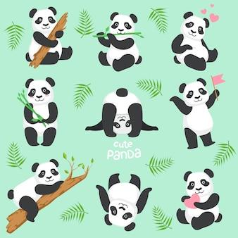 Simpatico personaggio panda in diverse situazioni