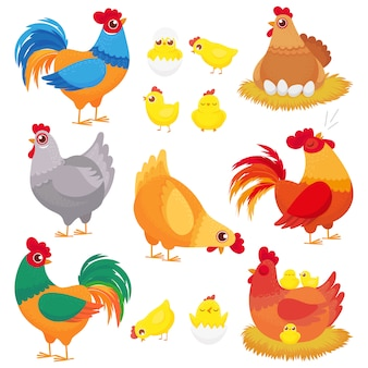 Simpatico pollo domestico, allevamento di galline, gallo di pollame e polli con pulcino, set di cartoni animati di galline
