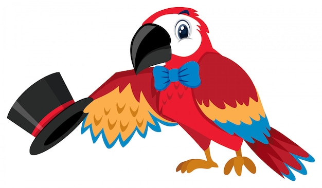 Singolo personaggio del pappagallo del circo su bianco