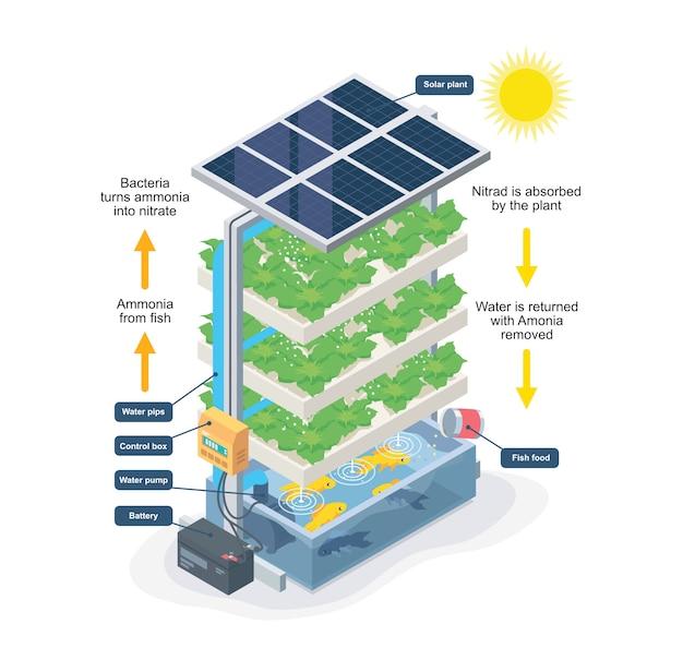 Sistema acquaponico smart farming isometrico