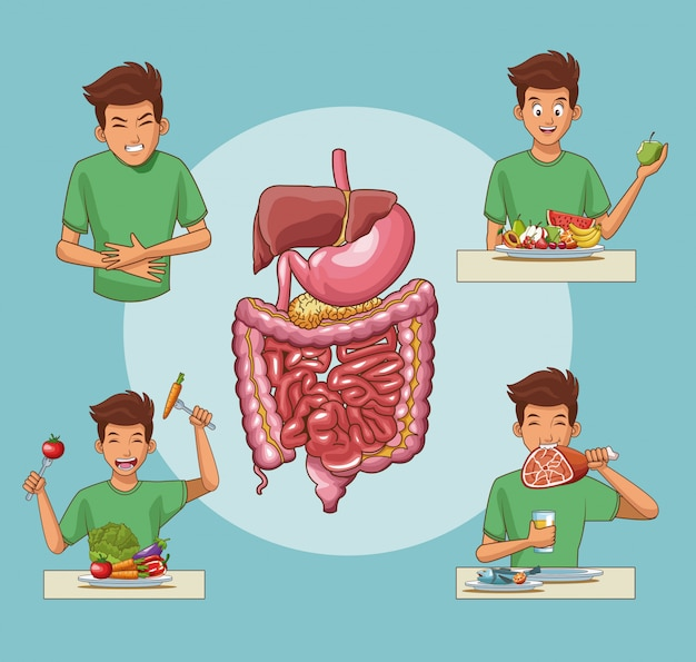 Sistema digestivo e cartoon giovane