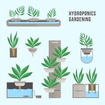 Sistema idroponico, tecnologia di giardinaggio. raccolta di diverse piante in stile piatto.