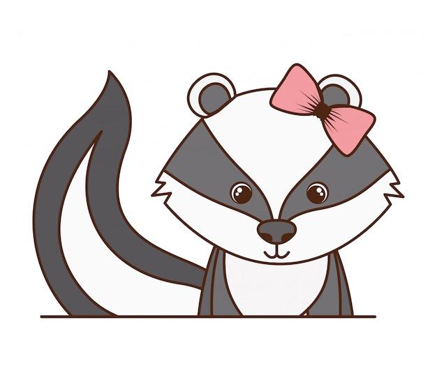 Skunk carino e adorabile