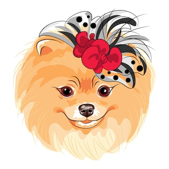 Sorridere della razza di pomeranian del cane di modo di vettore