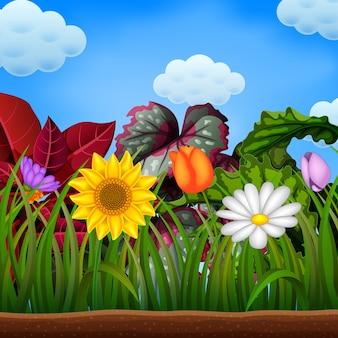 Spazio di terra con il grande fiore di girasole e camomilla