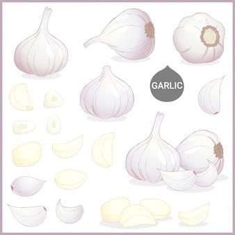 Spezie vegetali all'aglio essiccate in vari tagli e stili