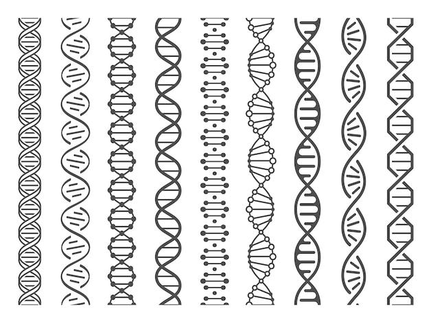 Spirale di dna senza soluzione di continuità. insieme dell'illustrazione della struttura dell'elica di adn, del modello genomico e del modello di codice di genetica umana
