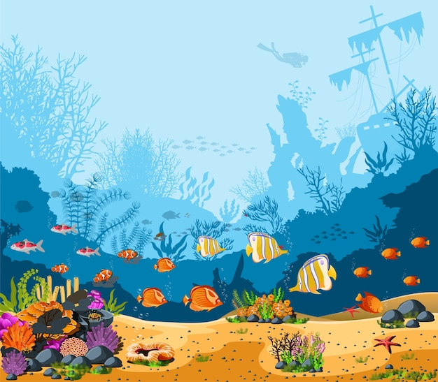 Splendide profondità oceaniche