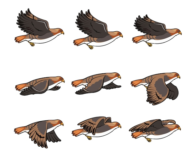 Sprite flying hawk gioco character animation