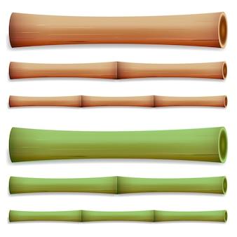 Steli di bambù