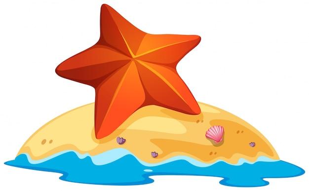Stella marina marrone sulla piccola isola