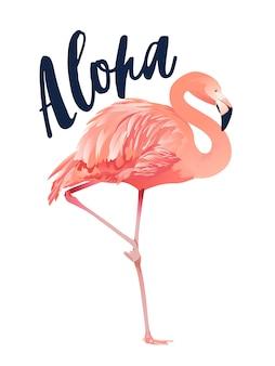 Stile dell'illustrazione del fenicottero di aloha isolato