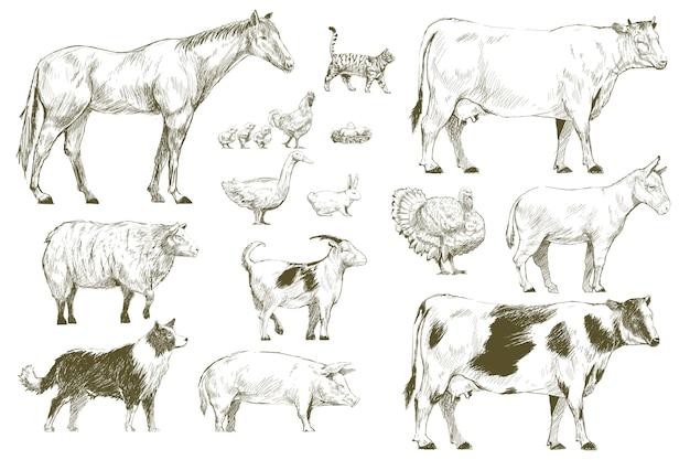 Stile di disegno illustrazione della collezione di animali da fattoria