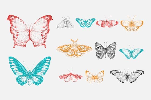 Stile di disegno illustrazione della collezione di farfalle