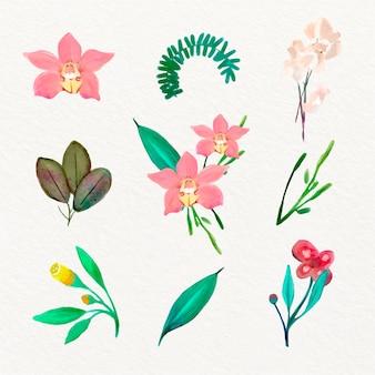 Stile di raccolta di fiori di primavera dell'acquerello