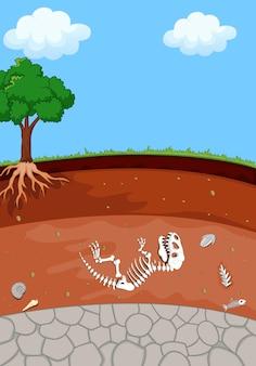 Strati del suolo con fossili di dinosauro