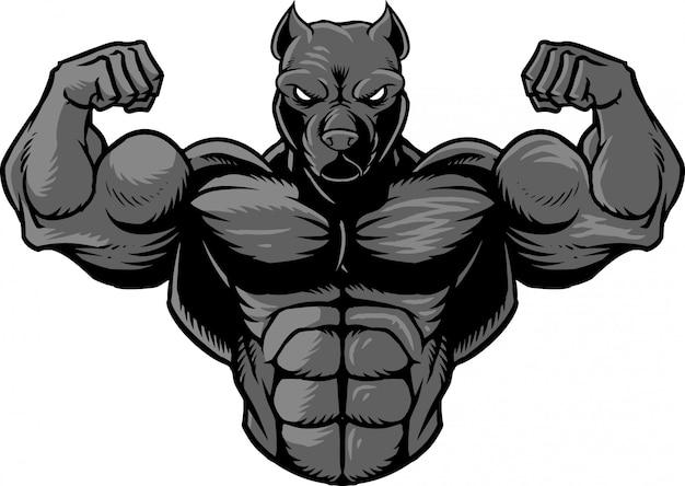 Strong pitbull 2
