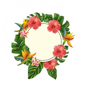 Struttura del cerchio del fumetto dei fiori della natura