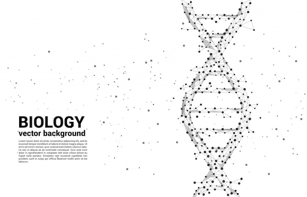 Struttura genetica del dna vettoriale dal poligono di linea dot dot. concetto di fondo per la biotecnologia e la biologia scientifica.