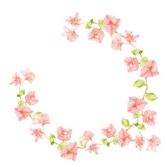 Struttura rosa della corona del semicerchio della buganvillea dell'acquerello con lo spazio della copia