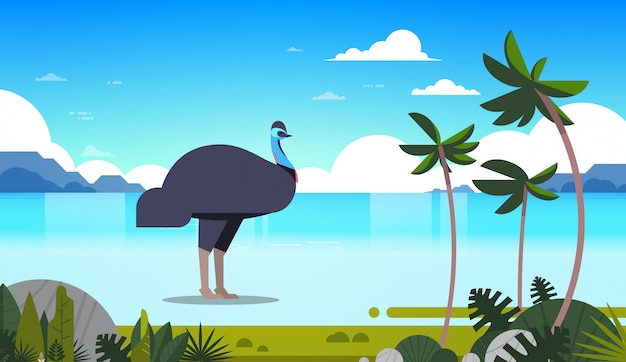 Struzzo o emu all'isola tropicale australiana dell'animale selvatico australiano di concetto di fauna della fauna selvatica della costa di mare con orizzontale di vista sul mare delle palme