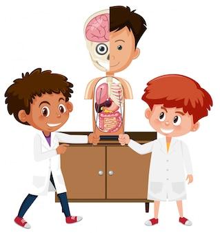 Studente di scienze che impara l'anatomia