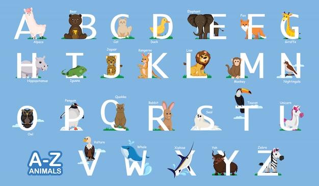 Supporti didattici az animale, lettera dalla a alla z e vari animali vicino lettere backgroud azzurro