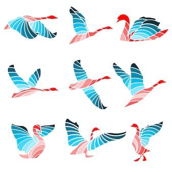 Swan color