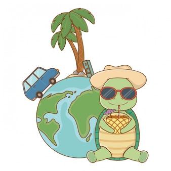 Tartaruga sveglia che gode delle vacanze estive