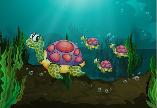 Tartarughe sott'acqua