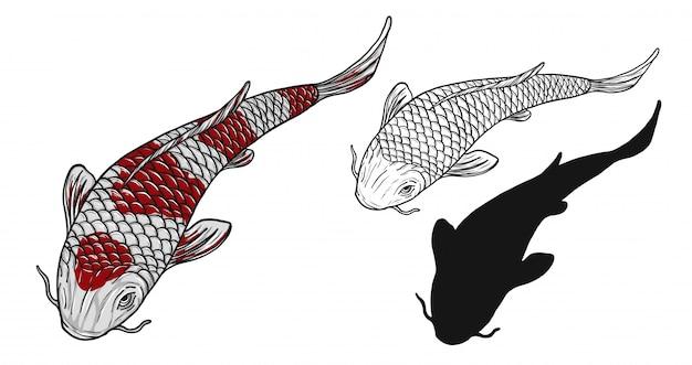Tatuaggio del pesce di koi a mano disegno