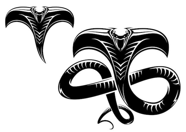 Tatuaggio serpente
