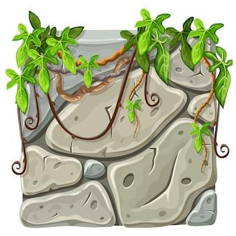 Tavola di pietra con rami e foglie di liana.