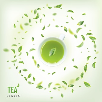 Tazza da tè con foglie verdi fresche