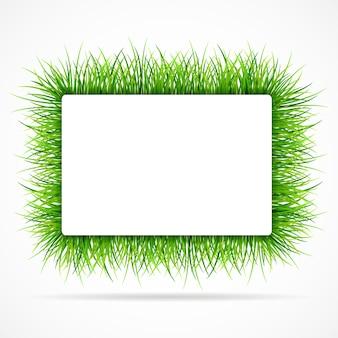 Telaio con erba verde