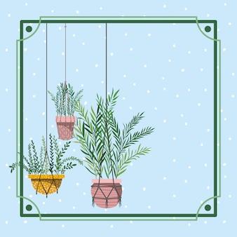 Telaio con piante d'appartamento appeso in macramè