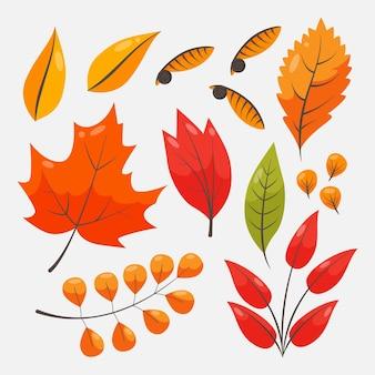 Tema della collezione di foglie d'autunno