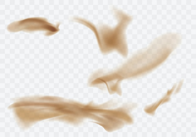 Tempesta di sabbia del deserto, nuvola polverosa marrone su trasparente