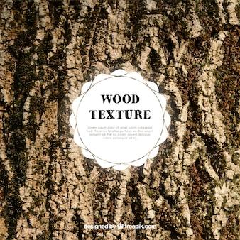 Tessitura scuro del tronco di legno