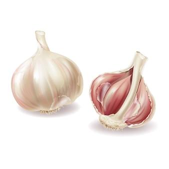 Testa di aglio realistico 3d - interi chiodi di garofano di verdure e aglio, lobuli in guscio, peeling.