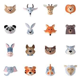 Testa di animali piatta