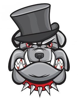 Testa di bulldog arrabbiato con cappello