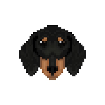 Testa di cane bassotto in stile pixel art.