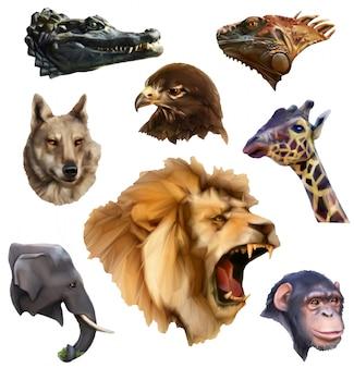 Teste di animali, set di icone di stile lowoly