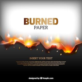 Texture di carta bruciata realistico