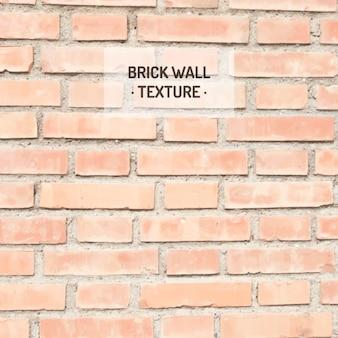 Texture muro di mattoni