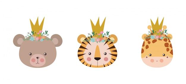 Tigre e giraffa dell'orso svegli