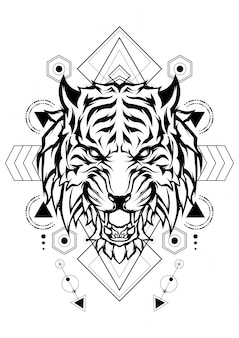 Tigre geometria sacra