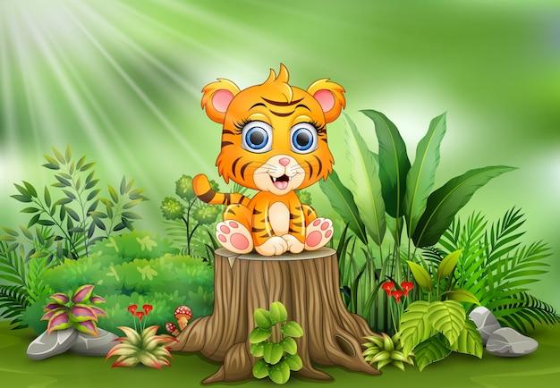 Tigrotto sveglio che si siede sul ceppo di albero con la priorità bassa delle piante verdi