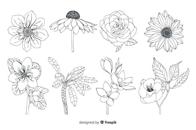 Tipi di fiori selvatici in primo piano